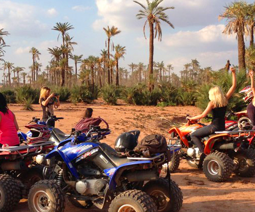Activity Quad Bike Ride In The Palm Grove Of Marrakech